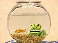 Ewfrogs-dorothy