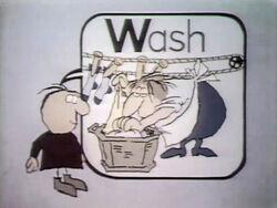 W-Wash