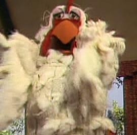Giant chicken muppet