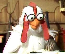 Scooter-chicken