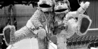 Wooly Nelson and Furlin Wailin