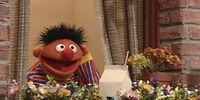 Ernie's window box