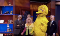 Big-bird-cindy-lauper-colbert