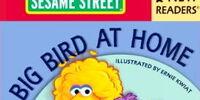 Big Bird at Home