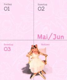 Heye kalender 2012 e
