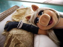 QVC#Moi_by_Miss_Piggy_video