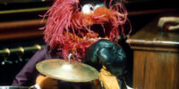 Muppet Show episodes that didn't feature main characters