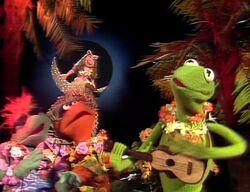 215 ukulele lady