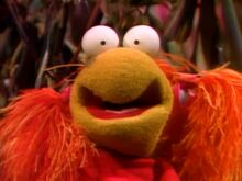 Red Fraggle small pupils