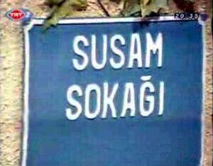 Susam sokagi title card