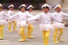 Duckdancers