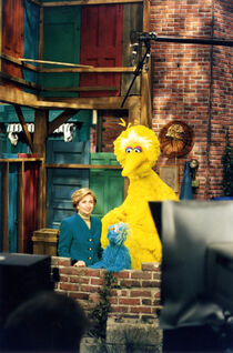 Hillary Clinton Big Bird nest