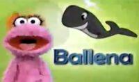 LolaBallena