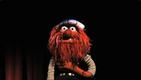 Muppets-com101