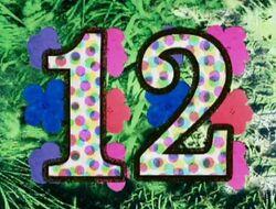 12Flowers