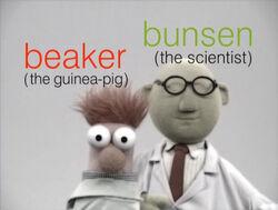 Muppetism Beaker guinea-pig Bunsen scientist