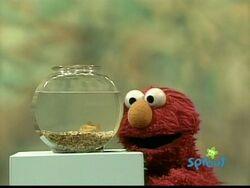 ElmoDorothy.Letter