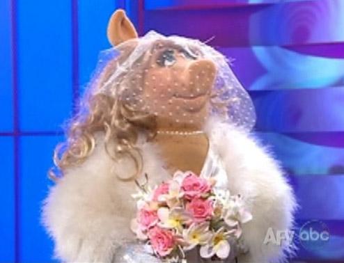 File:Weddingpiggy-afv.jpg