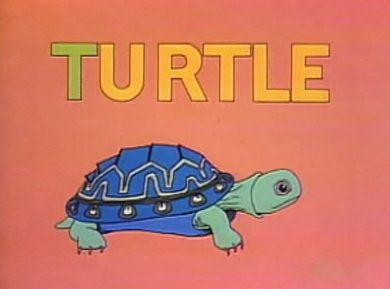 File:Turtle.Hale.jpg