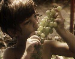 Kidssing-fruit