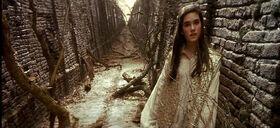 Sarah labyrinth