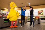 Big bird billy eichner