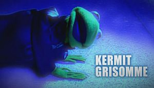 File:Kermitgrisomme.jpg