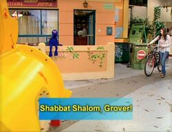 Shalom14
