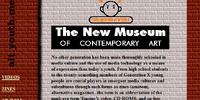 New Museum: Website History and Development