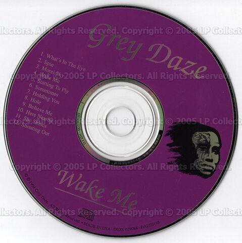 File:Grey Daze - Wake Me (Disc).jpg