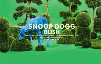 File:Snoop dogg california roll.jpg