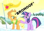 Brohoof-(n1293574743684)
