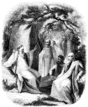 0015-Group-of-Arch-Druid-and-Druids-q75-735x889.jpg