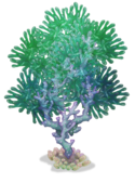 Water Island Medium Tree