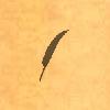 Sil-birdfeather