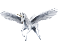 An-Beautiful-White-Winged-Unicorn-unicorns-39364232-1300-931