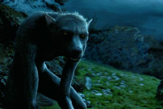 File:Remus Lupin - Werewolf.PNG