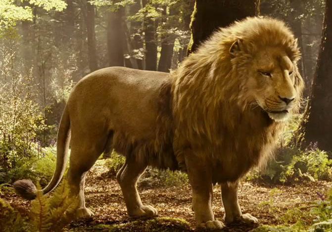 Image result for aslan