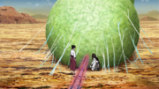 Tenten and Neji at Fuu's cocoon