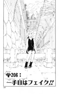 Chapter 208