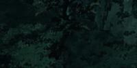 Training Cave