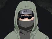 Shino Aburame P2