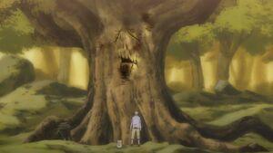 Old tree youkai-ich2