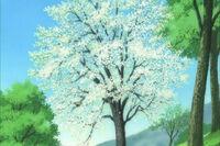 Youkai flower