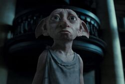 Dobby dh