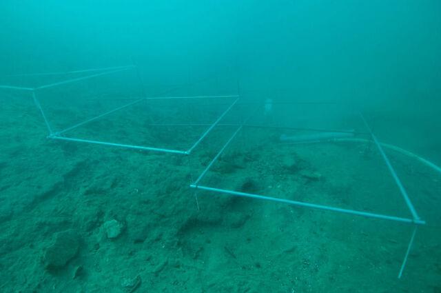 File:Desilo acheological underwater site at Hutovo Blato.jpg