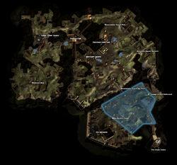 Map Many-Arrows Camp
