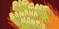 Pig Goat Banana Mantis!