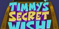 Timmy's Secret Wish!