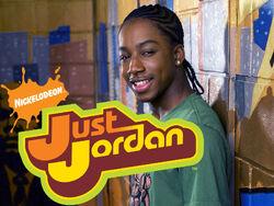 Just-jordan-11-1-
